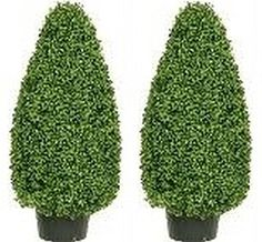 Artificial Boxwood Cone Topiary Bush Potted 36 Inch Two S... https://www.amazon.com/dp/B00SZFAX1I/ref=cm_sw_r_pi_dp_x_ZNgRybPTTCEFE