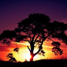 100 hermosos amaneceres por los que valió la pena madrugar (GALERÍA)