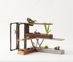 http://www.apartmenttherapy.com/modern-modular-terrariums-for-the-21st-century-plant-in-city-217785