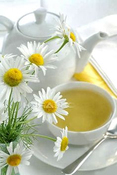 Chamomile tea - I sleep so much better when I sip some before bedtime. Try it especially when you've had a hard day. Daisy Hill, Café Chocolate, Pause Café, Daisy Love, Daisy Daisy, Organic Recipes, Ethnic Recipes, Yellow Cottage, Chamomile Tea