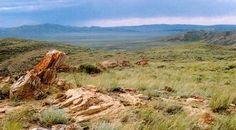2012 Land Report Best Brokerages: Clark & Associates Land Brokers | The Land Report