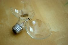 Conservatives and the battle of the bulb: Three perspectives | Environmental Defense Fund
