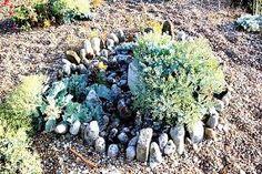 Image result for derek jarman garden