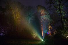 Pin for Later: Tour du Monde des Plus Belles Décorations de Noël  Dans le Gloucestershire, en Angleterre, les arbres ont été éclairés de façon à recréer un univers enchanté au National Arboretum de Westonbirt.