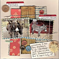 Miniature Donkeys - Scrapbook.com This woman (I assume) does exactly what everyone who has been enchanted by a donkey does for the rest of our lives--with variations. I, for instance, squeal DONKEEEEEEE.