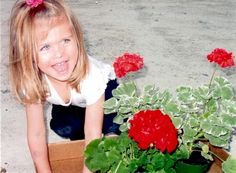2012 Year of the Geranium: Chloe's Geraniums