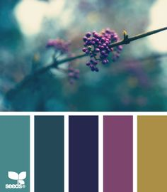 nature hues color scheme from Design Seeds Design Seeds, Colour Pallete, Color Combos, Teal Color Palettes, Purple Color Schemes, Pantone, Colour Board, Color Swatches, Paint Swatches