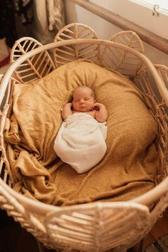 The Nala Bassinet is hand made showcasing whimsically rattan petal encased in a solid rattan frame. Its elegant and classy appearance will suit any new nursery. Courier Companies, Screws And Bolts, Baby Bassinet, Baby Size, Rattan, Cosy, Nursery, Bed, Furniture