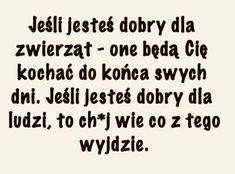 Polish Language, Wise Men Say, Qoutes, Math Equations, Humor, Sayings, Funny, Quotations, Quotes