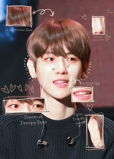 Baekhyun Wallpaper, Exo Group, Exo Lockscreen, Puppy Face, Exo Members, Chanbaek, Most Beautiful Man, Chanyeol, Anatomy