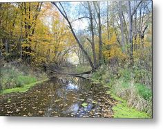 Bear Creek Autumn Metal Print by Bonfire #Photography