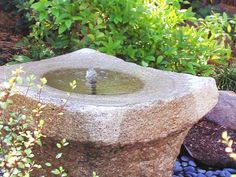 Get tips and ideas for creating a soothing meditation garden from the experts at HGTV.com.
