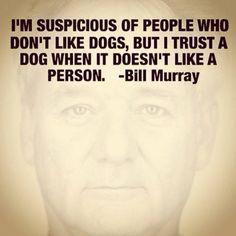 Bill Murray                                                                                                                                                     More