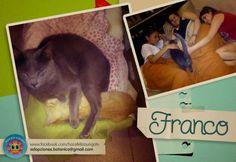 ¡ADOPTADO! Mario y su familia decidieron empezar el año adoptando a Franco, ahora son más felices que nunca! Gracias Mario por adoptarlo!