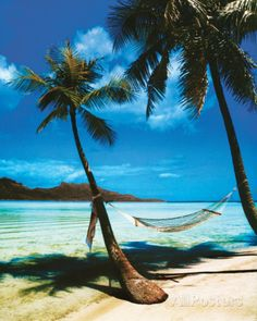 Tropical Beach Posters at AllPosters.com