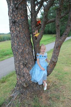 Disney Princess photo shoot, 5 years old, Cinderella