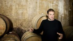 Dimitri Brečević of Piquentum in Istria has a Croatian-French background. Dimitri is one of the very few Croatian wine makers working with organic techniques in the field and in the cellar. Cellar, Croatia, Wines, Organic, French, French People, French Language, France