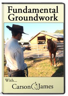 Groundwork DVD — Carson James Horses