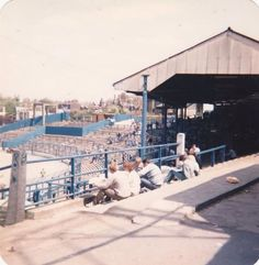 Stamford bridge the shed