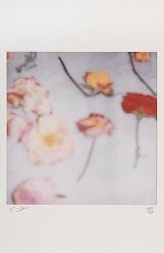 Cy Twombly, Light Flowers II, 2008