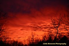 Sunset, Red, Colors, Photo, Photography, Digital Download, Download, Digital, Nature, Arkansas by LittleMomentsPhotos on Etsy