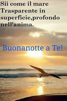 Buonanotte a Te! Good Night Wishes, Good Morning Good Night, Italian Memes, Italian Language, Good Thoughts, Carpe Diem, Verses, Life, Italy