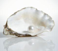 Gorgeous white pearl