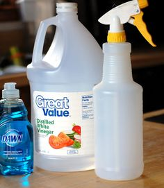Non-toxic Bathroom Cleaner: Vinegar & Dawn - It really works! Kills 99% germs, cuts through soap scum and deodorizes.