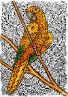 19 Best ideas bird doodle art to draw Zentangle Drawings, Bird Drawings, Art Drawings Sketches, Animal Drawings, Zentangle Animal, Zentangles, Zentangle Art Ideas, Drawing Animals, Doodle Drawings