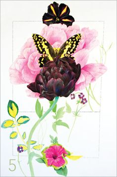 Flowers in Watercolor and Colored Pencil   A Step-by-Step