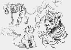 Animal Sketches, Animal Drawings, Art Sketches, My Drawings, Big Cats Art, Furry Art, Cat Art, Character Design Animation, Character Art