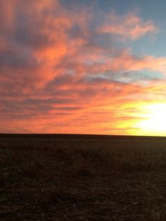 Sunsets in Kansas.... Pure beauty.