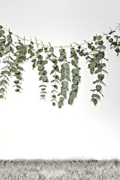 A quick (and easy) DIY eucalyptus garland - DIY home decor - Your DIY Family Here is a quick and easy diy eucalyptus garland to make this Christmas. This eucalyptus garland makes a really pretty backdrop to a dining table. Minimal Christmas, Christmas Diy, Homemade Christmas, Natural Christmas, Bouquet D'eucalyptus, Bridal Bouquets, Deco Baby Shower, Bridal Shower, Gold Baby Showers