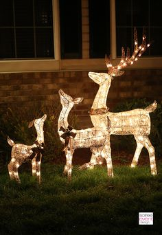 Image result for christmas reindeer statue and sleigh outside of house kawaii family