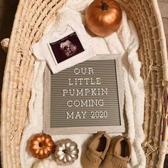 Thanksgiving Pregnancy Announcement with Pumpkins Pumpkin Recipes, Fall Recipes, Vegan Recipes, Thanksgiving Pregnancy Announcement, Halloween Pregnancy Announcement, Grandparent Pregnancy Announcement, Cute Baby Announcements, Pregnancy Announcement Photos, Best Baby Announcement