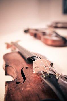 Violin Violins Classical Music Classic Free Photo
