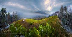 500px Editors Choice : Changbai mountain in May by shanyewuyu_100