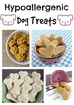 Looking for amazing hypoallergenic dog treat recipes for your pooch? How about f… Looking for amazing hypoallergenic dog treat recipes for your pooch? How about four of our favorites? Try these out and your dog will be thrilled! Puppy Treats, Diy Dog Treats, Homemade Dog Treats, Healthy Dog Treats, Dog Biscuit Recipes, Dog Treat Recipes, Dog Food Recipes, Hypoallergenic Dog Treats, Food Dog