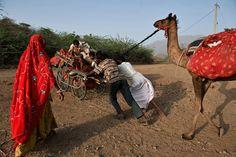 Nomads, Thar Desert, Rajasthan, India ...
