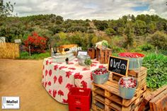 Lugar para servir los refrescos al aire libre durante catering de boda