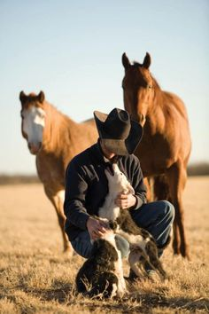 Cowboy and border collie pups.