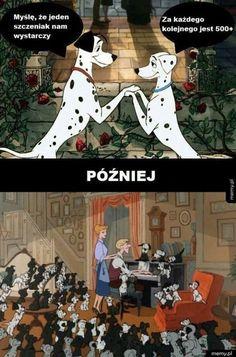 Polish Memes, Best Memes Ever, Mickey Mouse Wallpaper, Funny Memes, Jokes, Harry Potter Wallpaper, Disney And Dreamworks, Funny Comics, Haha