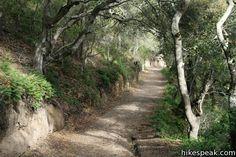 Sycamore Crest Trail ~ Avila Beach