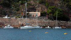 Boats At Porto Azzurro, Elba Island - Stock Footage | by eZeePicsStudio
