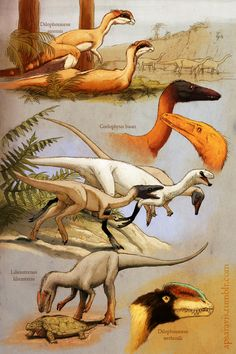 Early theropods by Apsaravis (http://apsaravis.tumblr.com/)