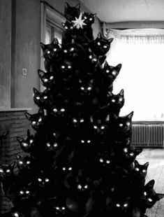With Tenor, maker of GIF Keyboard, add popular Christmas Tree animated GIFs to your conversations. Share the best GIFs now >>> Christmas Tree Gif, Black Christmas Trees, Christmas Cats, Merry Christmas, I Love Cats, Cute Cats, Funny Cats, Animals And Pets, Funny Animals