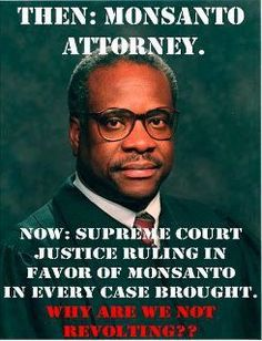 Clarence Thomas and Monsanto ~ whaatt? he was Monsanto's lawyer?  Obviously a conflict of interest, how can this happen???