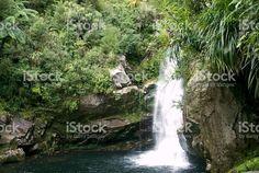 Wainui Falls, Takaka, Golden Bay, Tasman Region New Zealand royalty-free stock photo