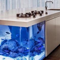 Island with a View: Dutch Kitchen Incorporates Elegant Aquarium Dutch Kitchen, Grand Kitchen, Modern Kitchen Island, Kitchen Reno, Make Cash Fast, Small Fish Tanks, Small American Kitchens, Adobe, Studio Kitchen