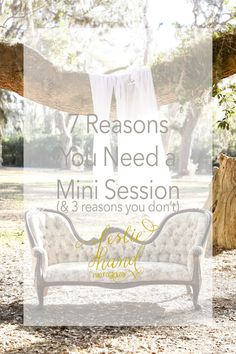 7 Reasons You Need a Mini Session & 3 Reasons You Don't — Leslie Hand Photography Hand Photography, Bhldn, Mini, Business, Store, Business Illustration